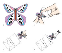 Instructions to send a butterfly